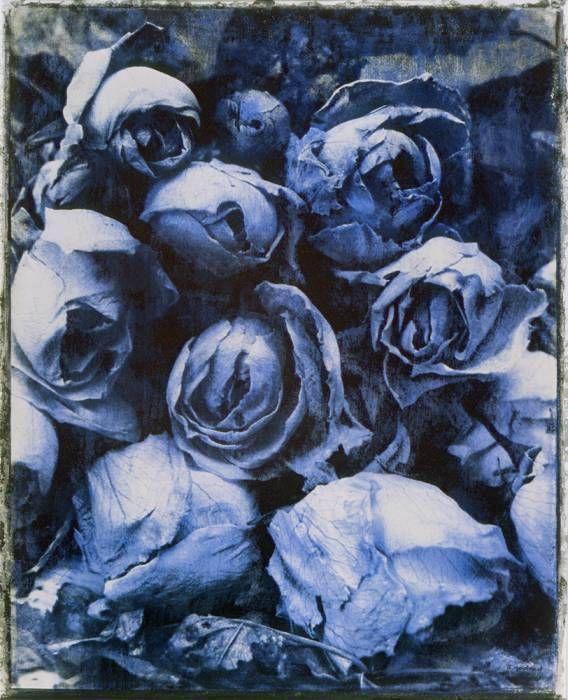 Roses, bleu (1995)