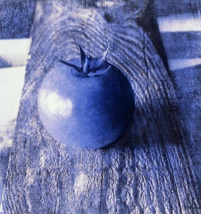 Tomate bleue sur bois (1995)