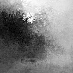 GENESIS  Noir & Blanc