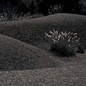 Digne dune 09-2 (1995)