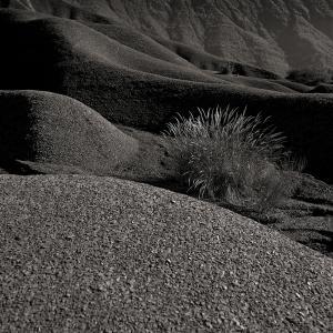 Digne dune10b (1995)
