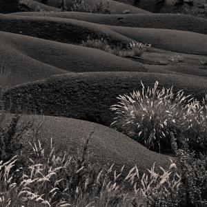 Digne dune 31-2 (1995)