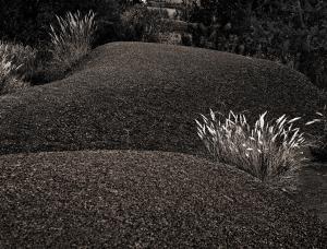 Digne dune 50 (2004)