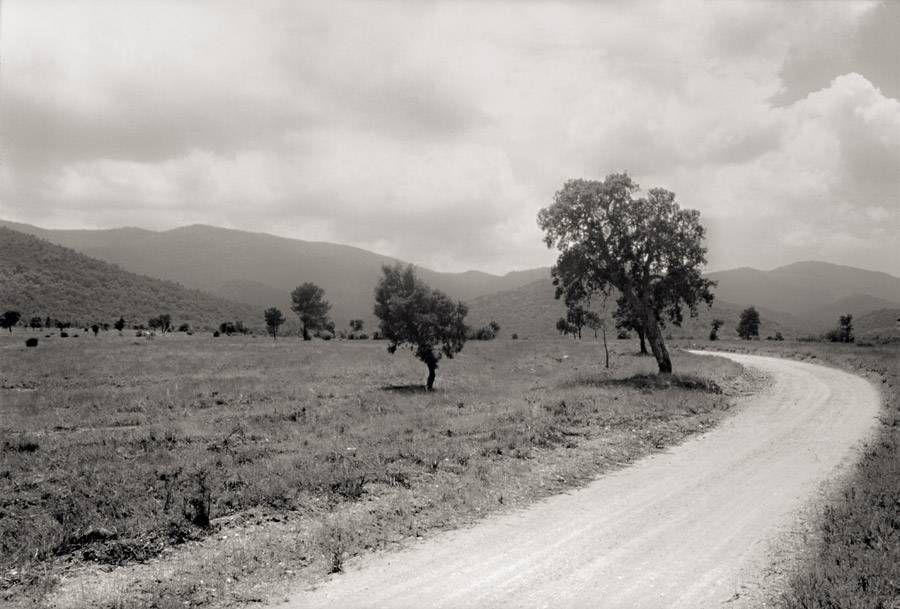 Plaine des Maures 52