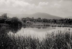 Plaine des Maures 92